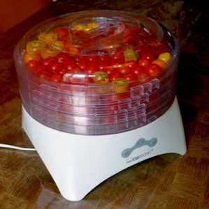 Electric food dryer