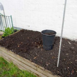 Layer of compost
