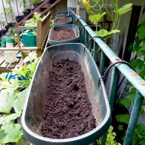 Compost in trays