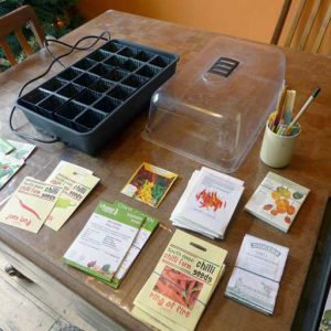 Selecting quality seed