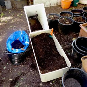 Mixing with potting soil