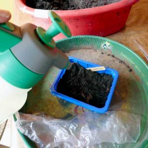Spray watering