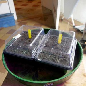 Basic propagation box