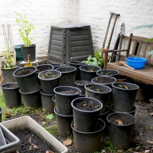 Clearing summer pots