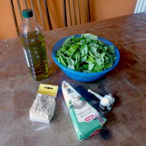Basic pesto ingredients