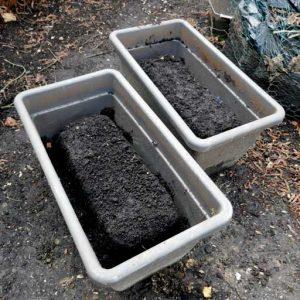 Ice-blocks in trays