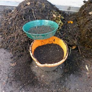 Sifting out potting soil