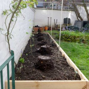 Top dressing raised bed