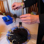 Repotting Beans - Expose roots