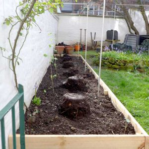 Compost for raised bed