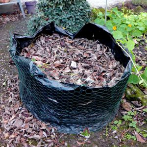 Autumn leaves to make leaf mould