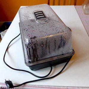 Electric propagator