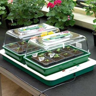 Fixed Temperature Propagator