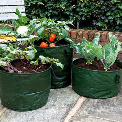 Gardman Vegetable Planters