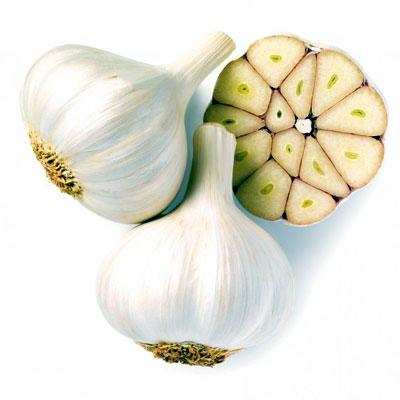 Garlic Flavour