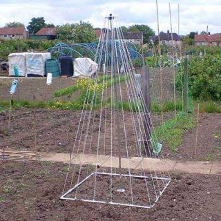Growing Pole