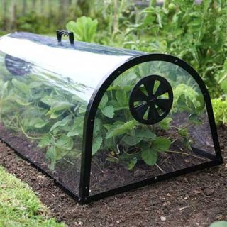 Haxnicks Kitchen Garden Cloche - 100cm