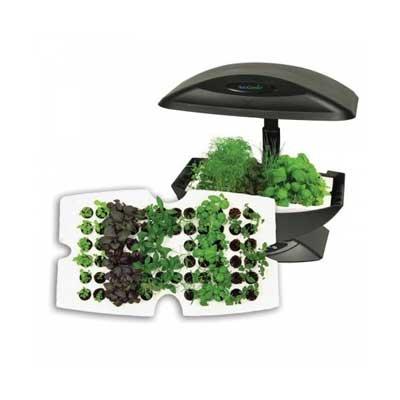 Hydroponic Garden Starter Tray