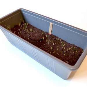 Larger seed tray