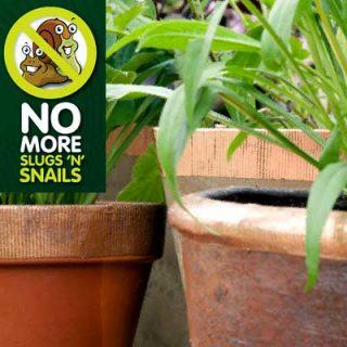 No More Slugs