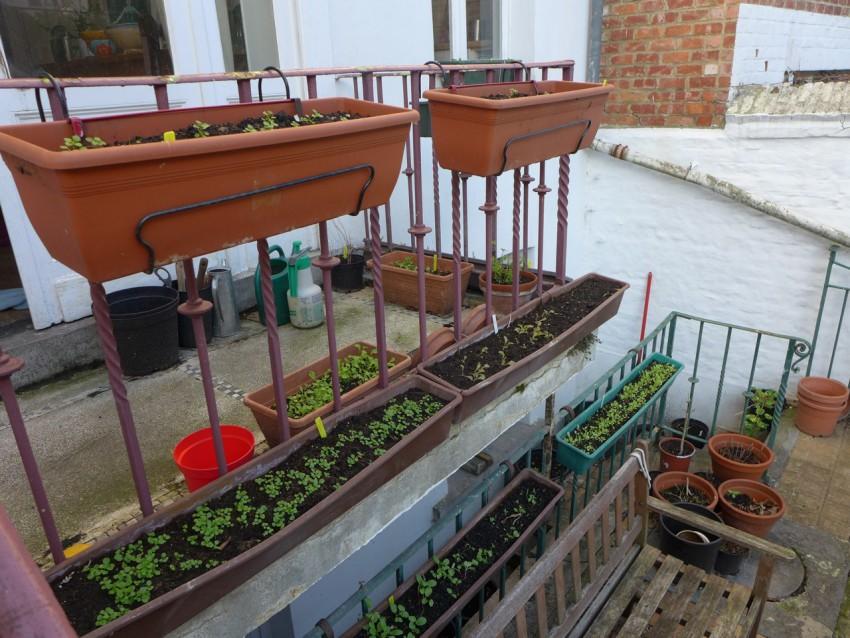 Balcony trays