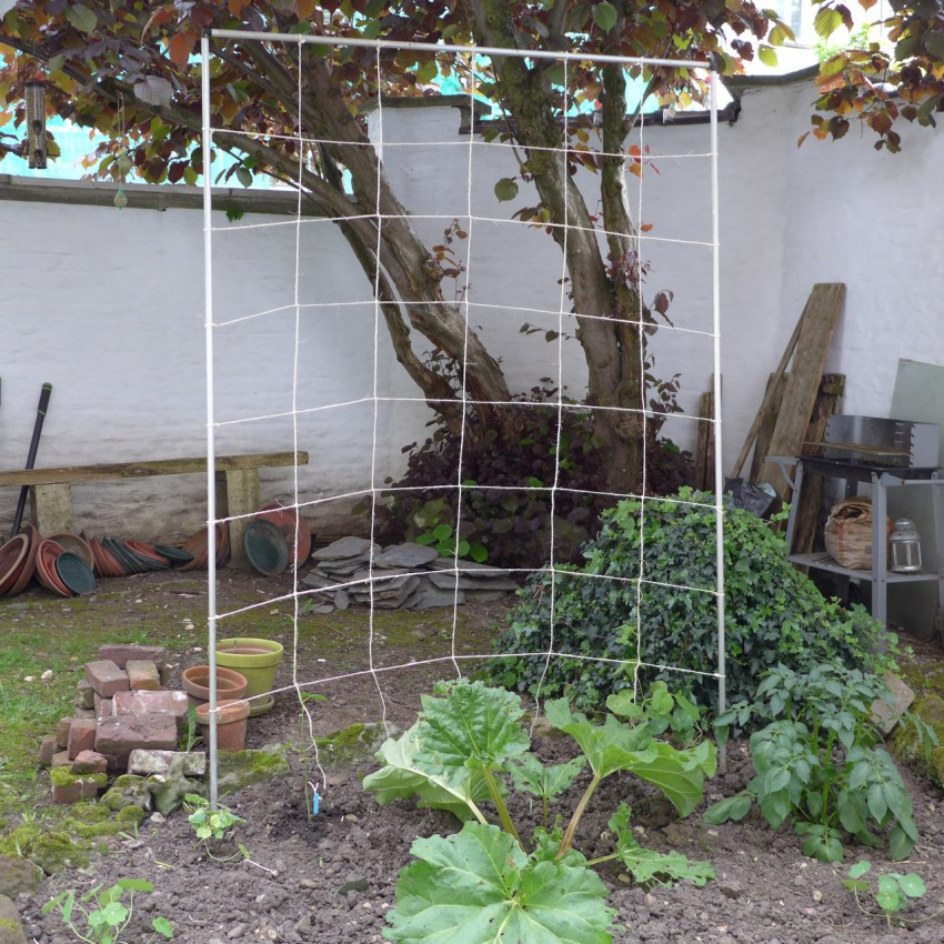 Frame and net