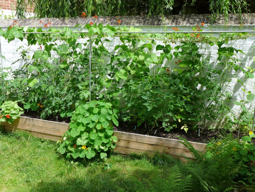 Planting levels