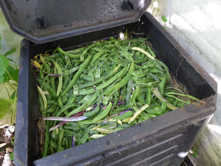 Composting beans