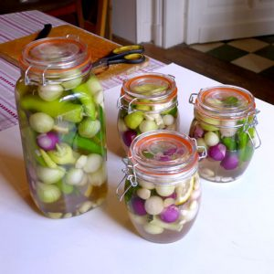 Pickled with peppers