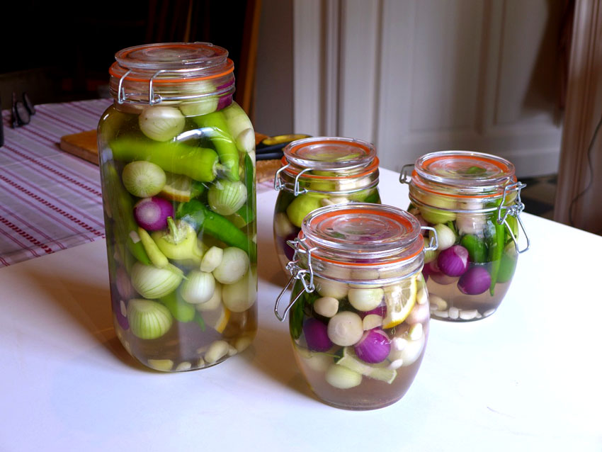 Pickles for breakfast