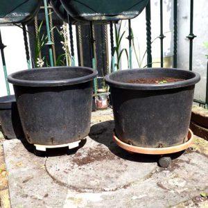 Pots on roller skates