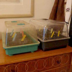 Propagation boxes
