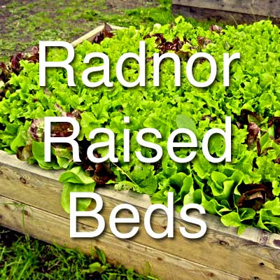Radnor Raised Beds