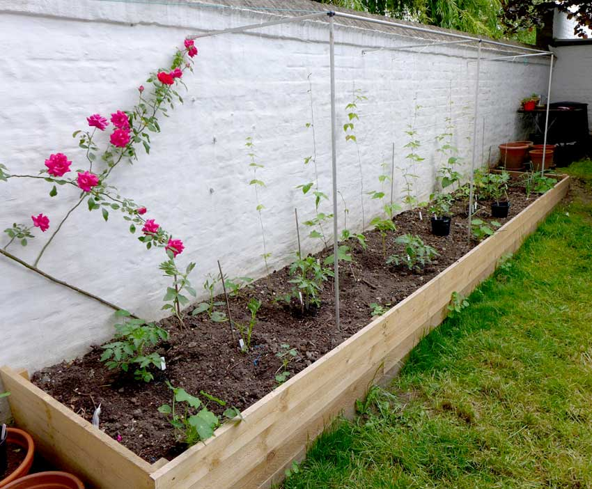 Raised bed layout
