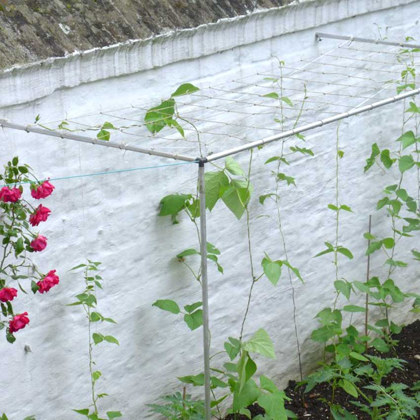 Diary Of A Brussels Kitchen Garden
