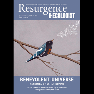 Resurgence and Ecologist Magazine