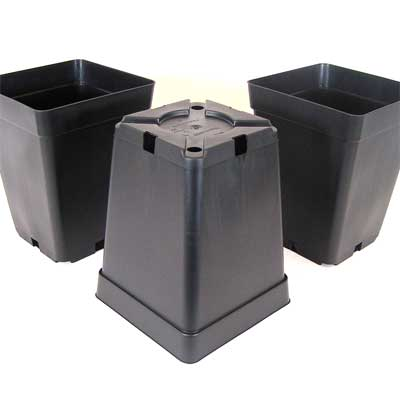 Square Plant Pots