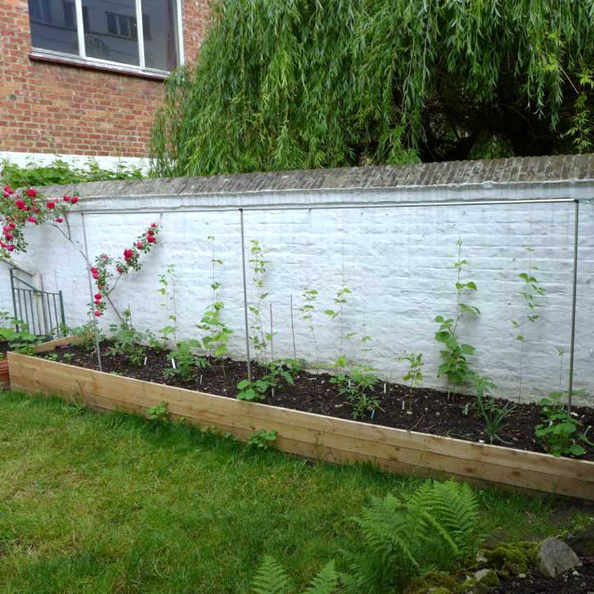 raised bed layout  diary of a brussels kitchen garden