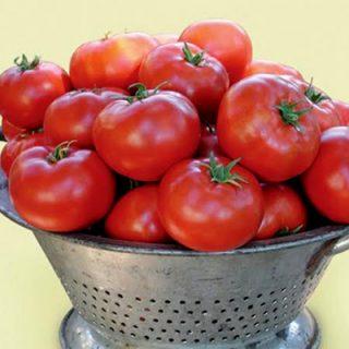 Tomato Legend