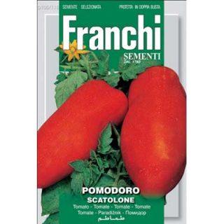 Tomato Scatolone