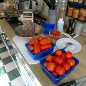 Tomatoes for sauce