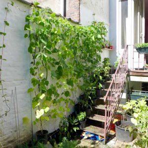 Using balcony wall
