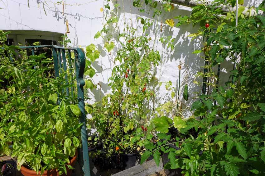 Using garden corners