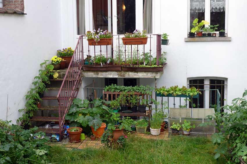blog-2015-balcony-planting-02