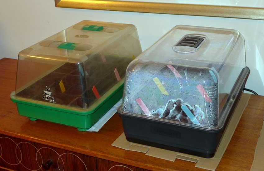 Domestic seed propagators - Heated and non-heated propagators