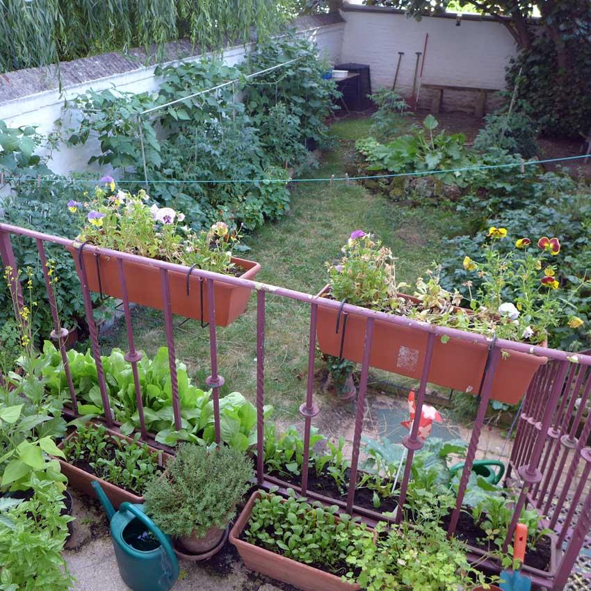 Container Gardening Balcony
