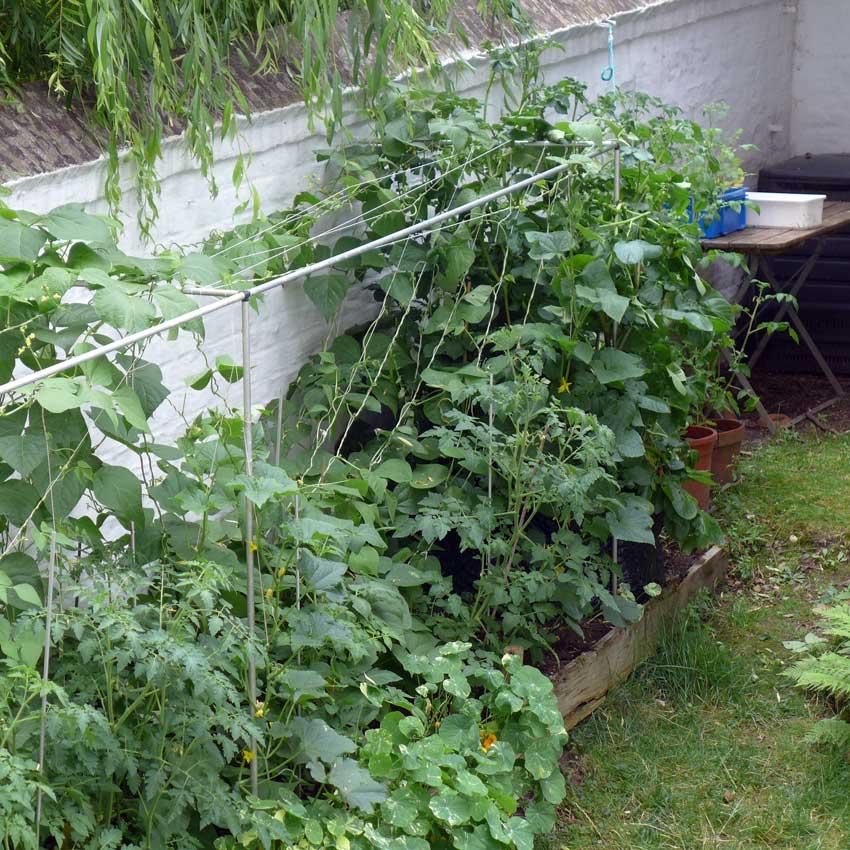 page-vertical-gardening-04