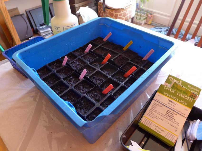 Planting list - week ending 13 March 2016