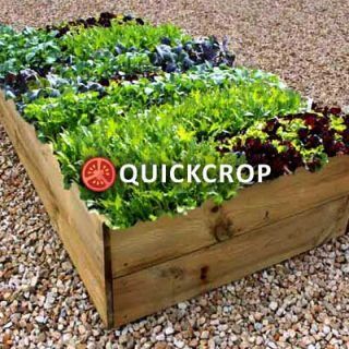Quickcrop Raised Beds