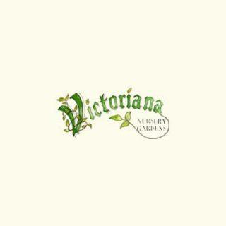 Victoriana Nursery